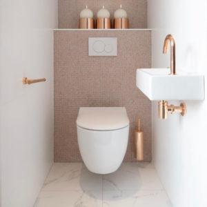 Toilet in Weesp